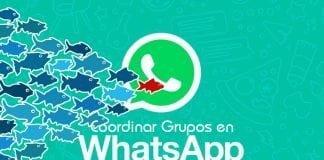 Coordinacion de grupos en Whatsapp